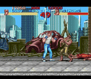 Play Final Fight Online