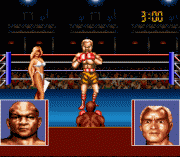Play George Foreman K.O. Boxing Online