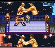 Play Hammerlock Wrestling Online