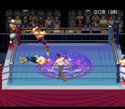 Play Jikkyou Power Pro Wrestling '96 – Max Voltage Online