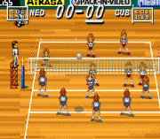 Play Multi Play Volleyball Online