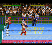 Play Natsume Championship Wrestling Online