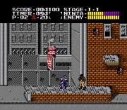 Play Ninja Gaiden Trilogy Online