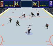 Play RHI Roller Hockey '95 (unreleased) Online