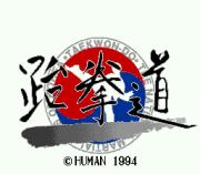 Play Taekwon-Do Online