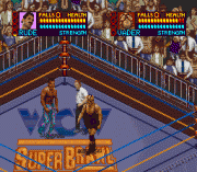 Play WCW Super Brawl Wrestling Online