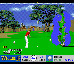Play Wicked 18 Golf Online