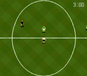 Play World Cup USA 94 Online